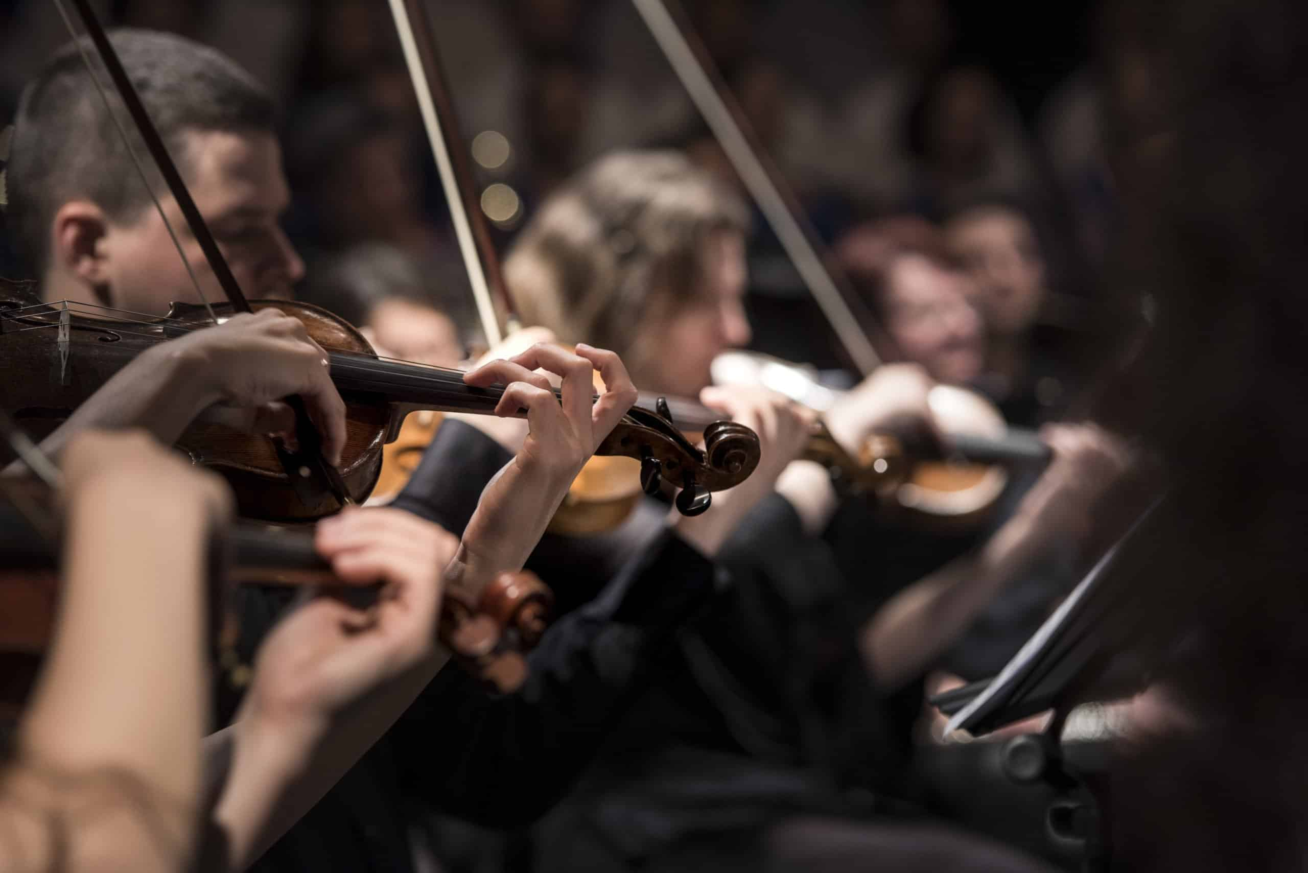 image of violin section of orchestra
