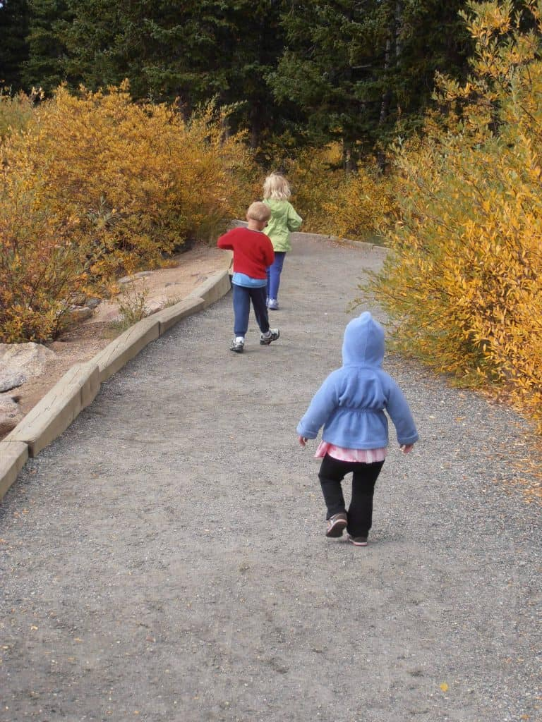 Image of three children from behind walking on a path.