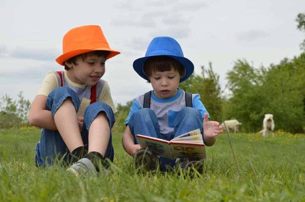 Reasons to homeschool, joy in learning
