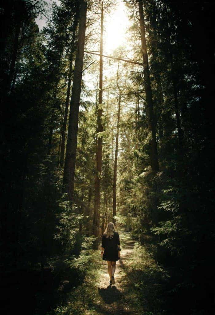 If you want to thrive as a homeschool mom, you must take time for self-care, like exercise, such as this woman walking in the woods.