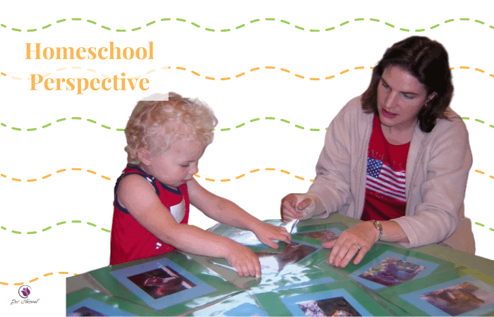 Image of little girl with curly blond hair and woman with long brown hair at a table sorting pictures. In the background are green and orange squiggly lines and the words Homeschool Perspective.