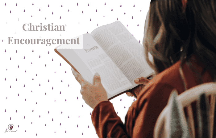 Image of woman with brown hair holding a Bible - looking at her from behind. In the background are purple dots and the words Christian Encouragement.